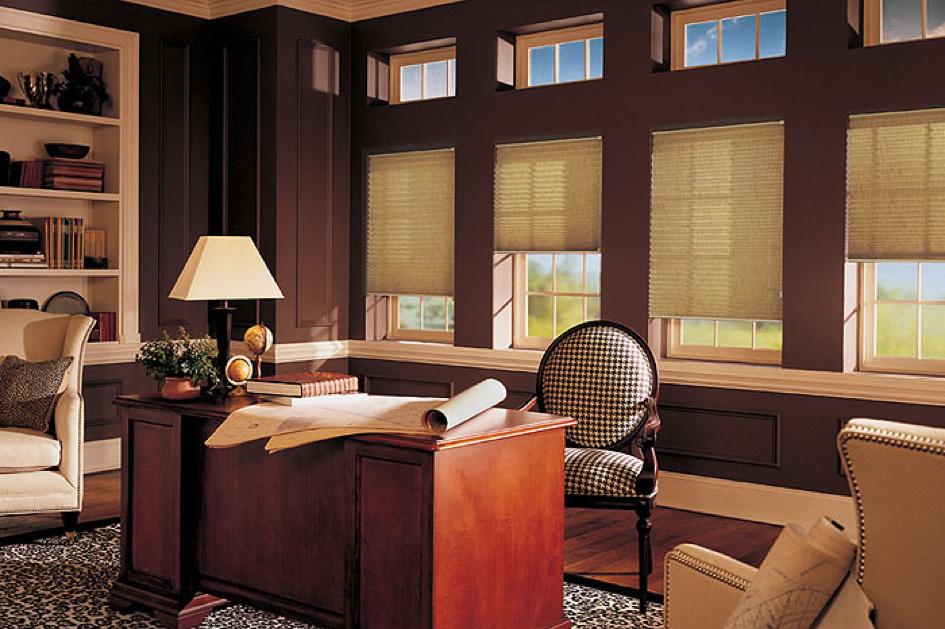 Czy warto kupować plisy okienne ?